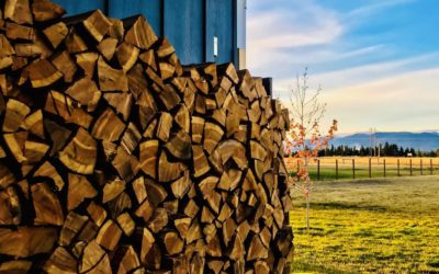 Cutting Firewood: Fun For The Whole Family?