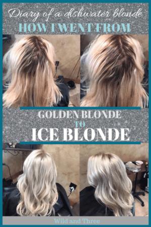 Golden blonde to Ice blond hair