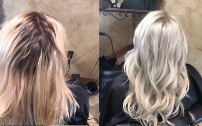 Diary of a Dishwater Blonde: How I went from Golden Blonde to Ice Blonde.
